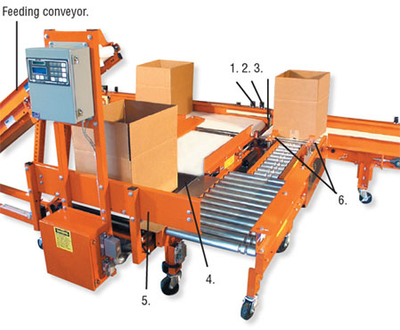 Trunkline Box-Filling Conveyor Systems